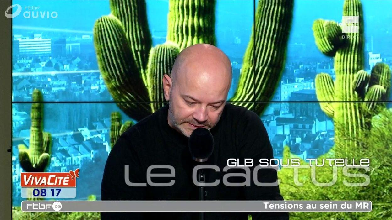 Le cactus :
