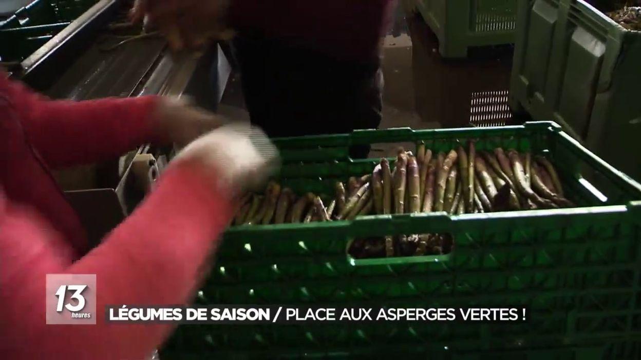Légumes de saison : Place aux asperges vertes !