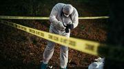 Crimes et Indices