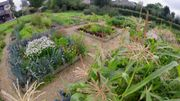Jardins & Loisirs