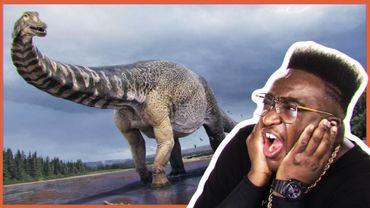 Une nouvelle espèce de dinosaure géant !