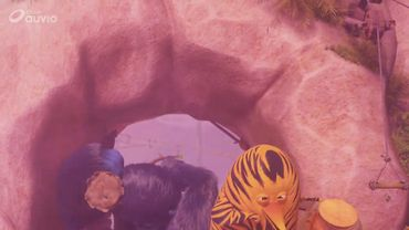 Les As de la Jungle : à la rescousse !