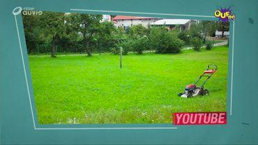 Raoul tond sa pelouse
