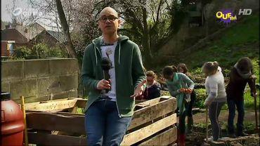 Et si on créait un petit coin de nature dans la cour de récré...