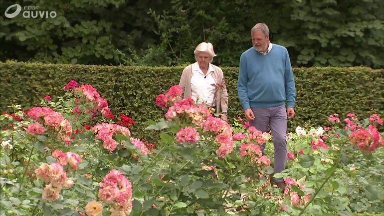 La roseraie de courtrai extrait jardins et loisirs du 8 for Jardins et loisirs
