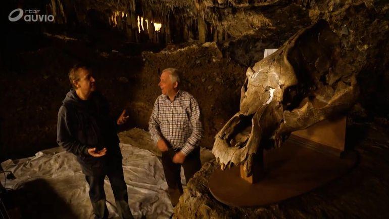 centre-archeologique-de-la-grotte-scladina