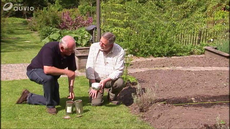 Le potager du jardin massart semis de radis et de for Jardin et loisir