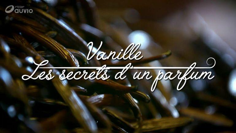 vanille-les-secrets-d-un-parfum