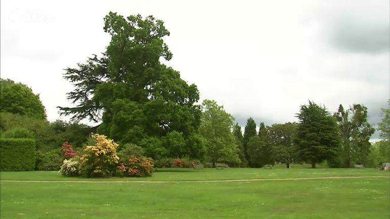 Jardins et loisirs en angleterre les jardins de downton for Jardins et loisirs