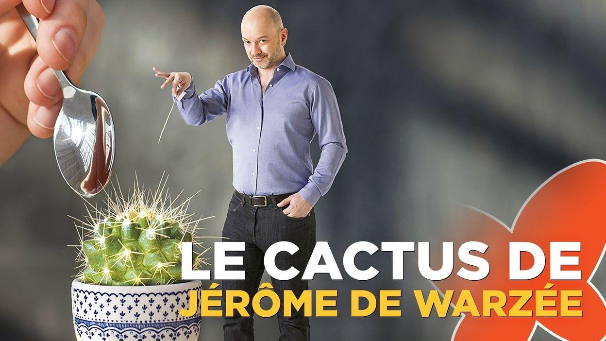 Le cactus de Funky Fab
