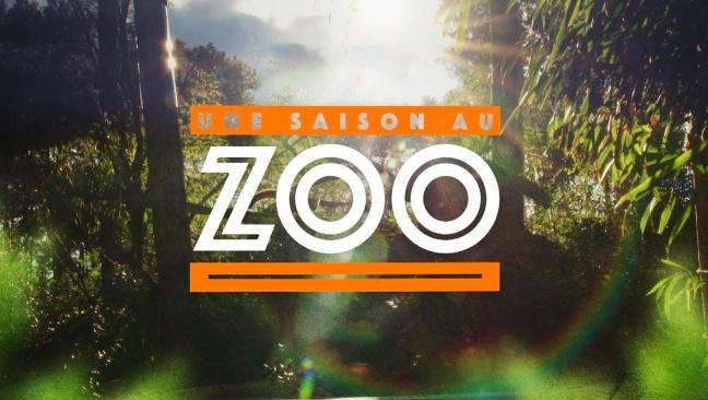 Une saison au zoo lazyload