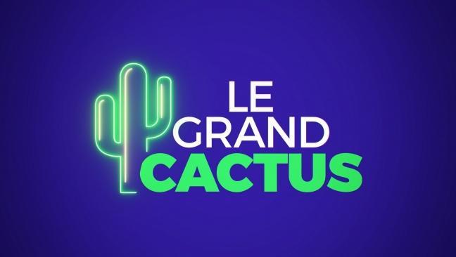 Le Grand Cactus (Boucle de nuit) lazyload