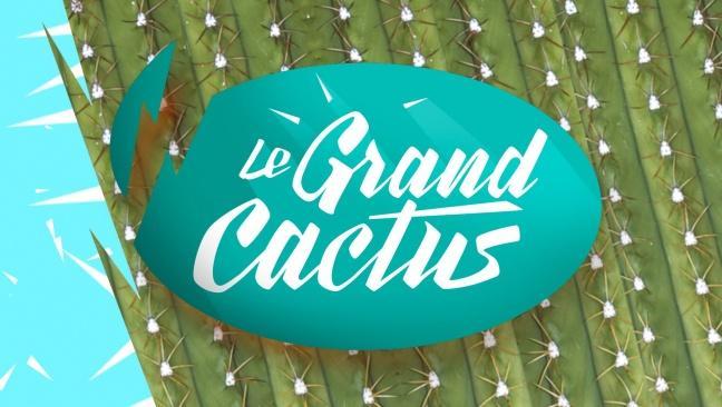 Le Grand Cactus (Boucle de nuit)