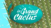 Le Grand Cactus 2017 (Boucle de nuit)