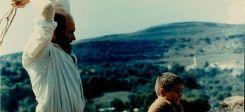 Padre Padron