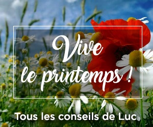 Nos bons plans du printemps